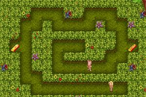Adam&Eve Adventures