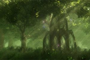 Hidden Stars-Fantasy Forestc